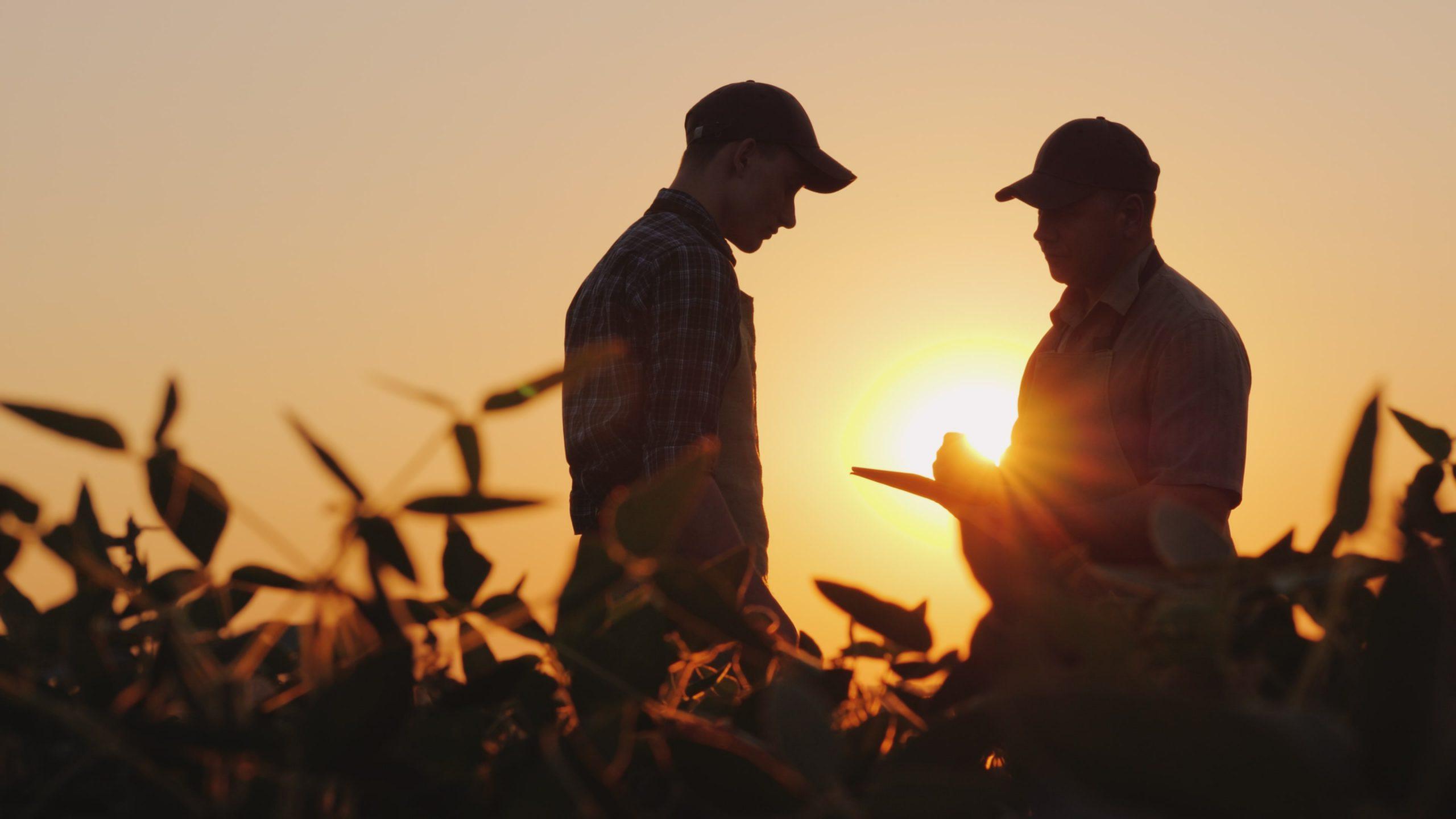 Dois fazendeiros conversando no campo