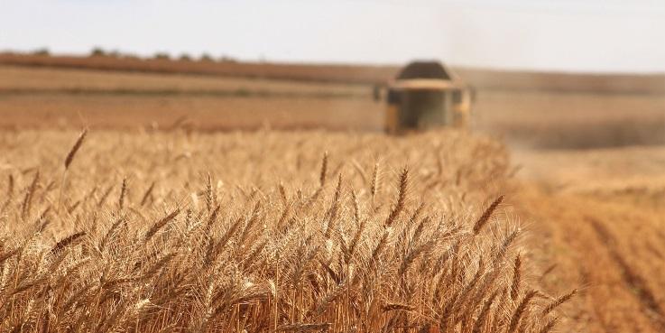 rentabilidade do agronegócio